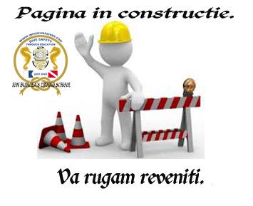 Pagina in constructie