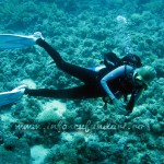 voucher_cadou_scufundari_diving_egipt_hurghada