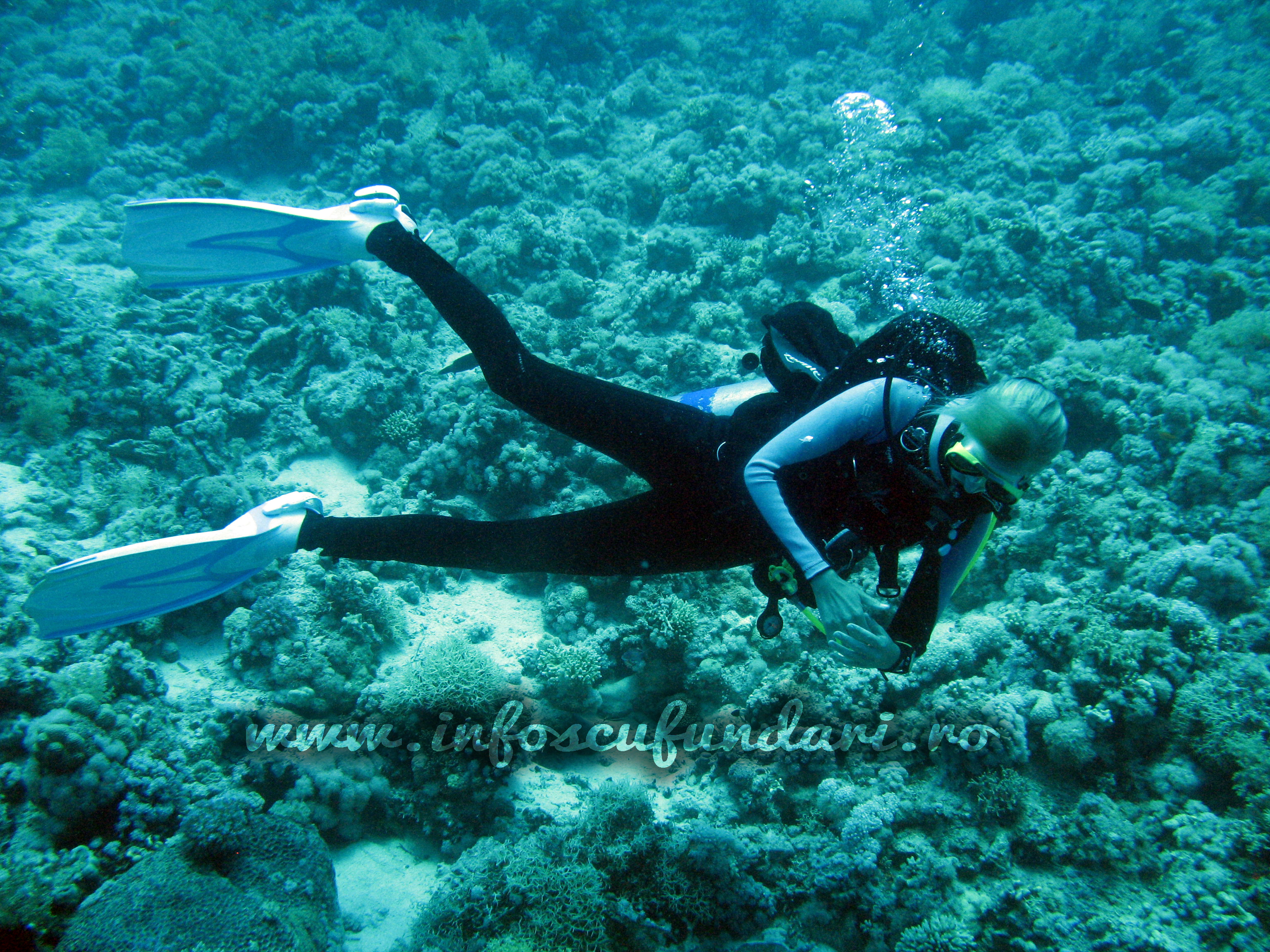 voucher_cadou_scufundari_scuba-diving
