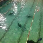 perfect Buoyancy _cursuri_scufundari_scuba-diving_bazin_bucuresti
