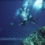 cursuri_scuba-diving_scufundari_ion_buncea_diving_school