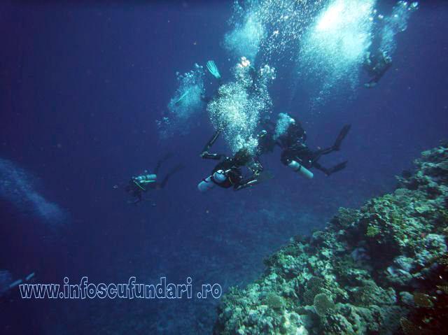 fotografii_scufundari_scuba-diving_egipt