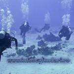 cursuri_scufundari_scuba-diving_lectii_scufundari_egipt