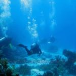 cursuri_scuba-diving_scufundari_egipt